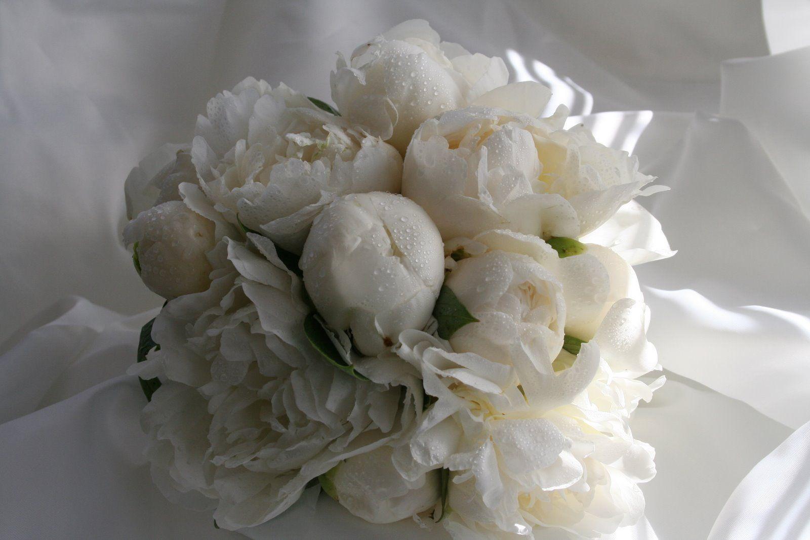 Bridal Bouquets Designs White Wedding Bouquet A Bouquet Of White