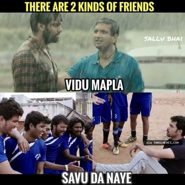 7c6a5a9a14d57c2259c7bba0ad5efcd2 2 kinds of friends humour pinterest memes, vadivelu memes