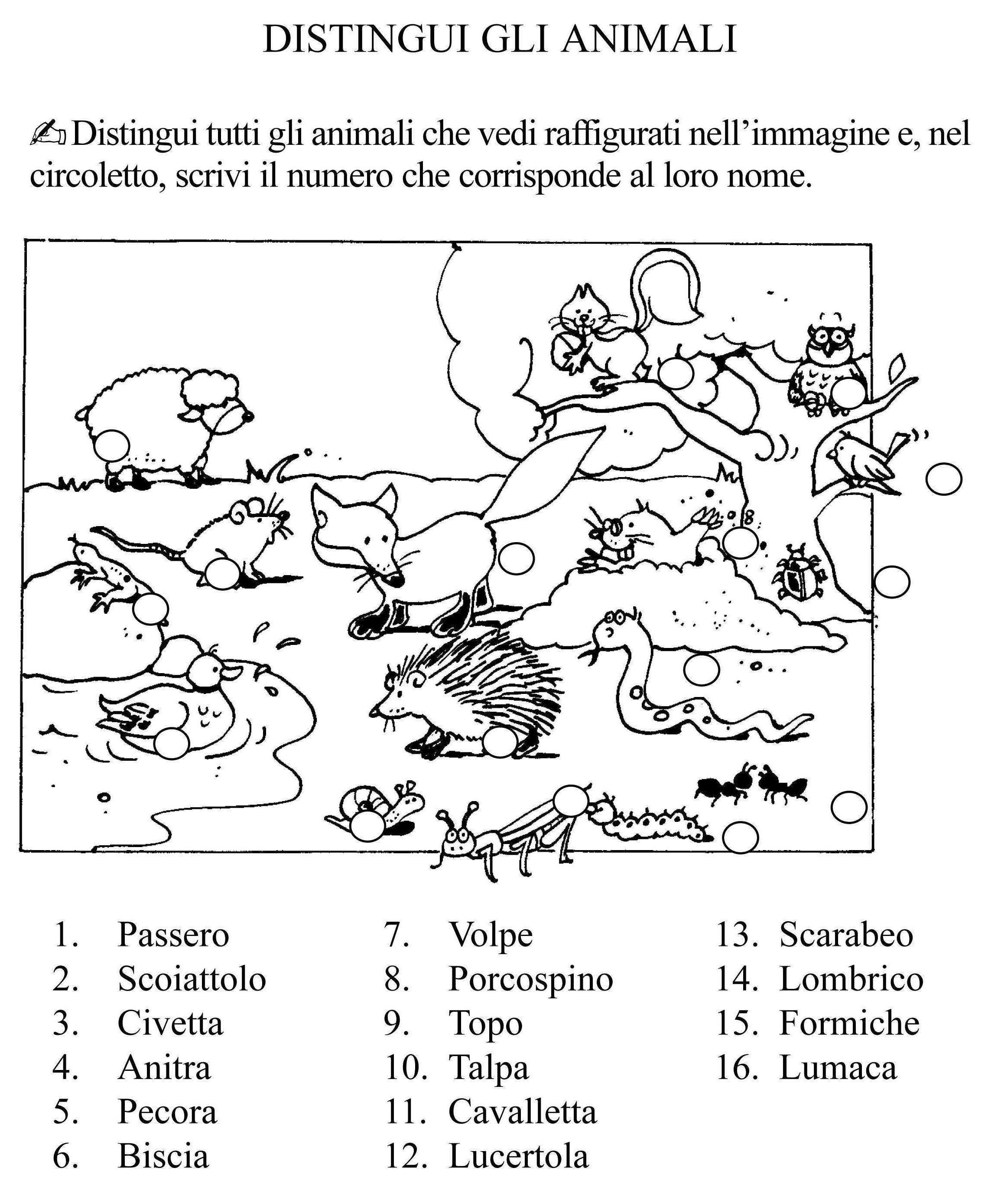 Extrêmement distingui gli animali classe seconda.jpg | Teaching Italian To  ZR92