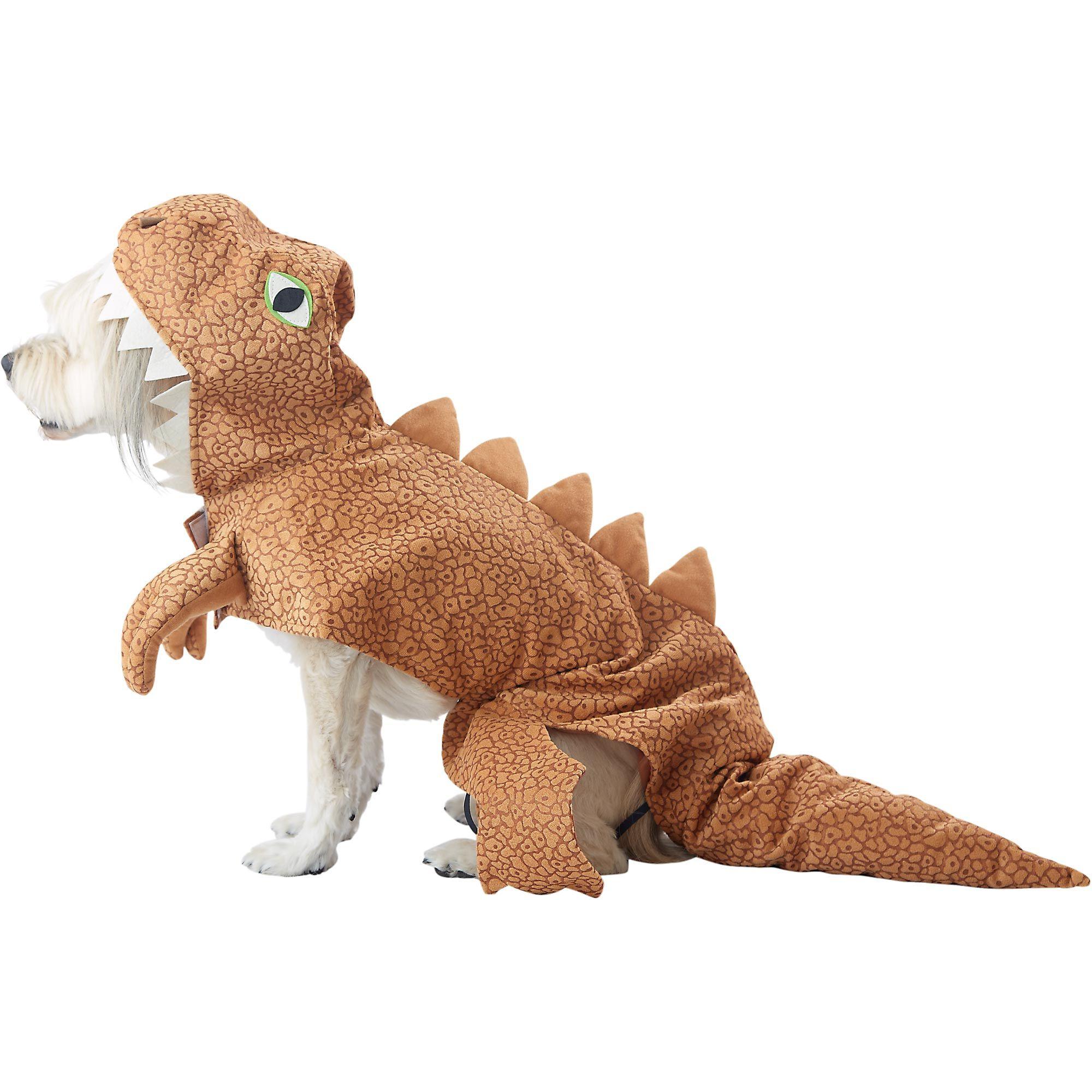 Dog dinosaur tyrannosaurus rex costume TRexcellent dog