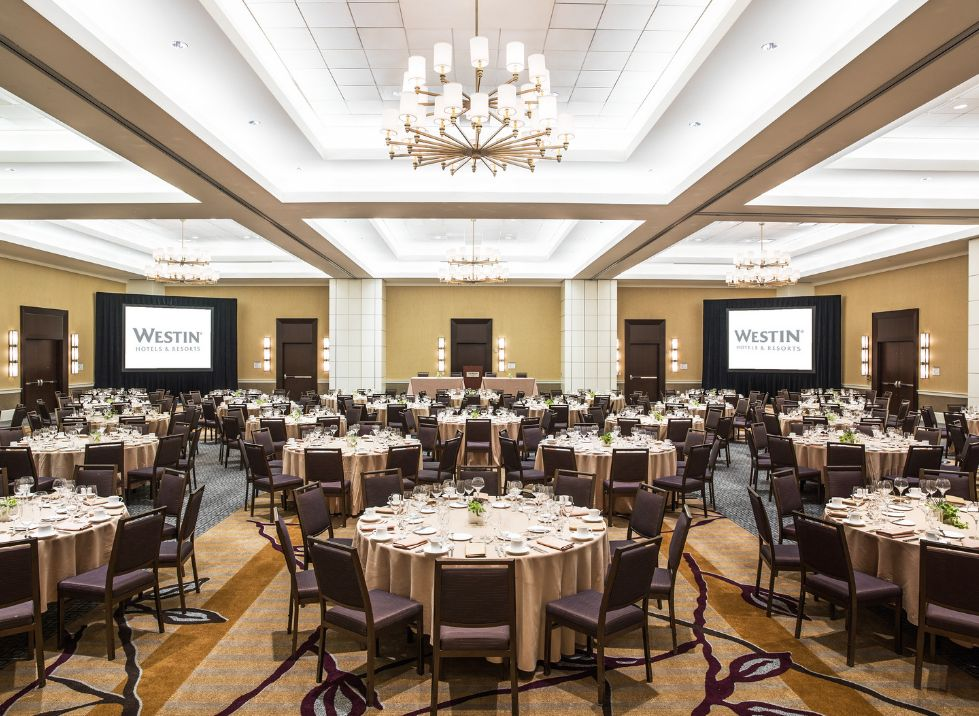Find the westin book cadillac detroit wedding venues one of best find the westin book cadillac detroit wedding venues one of best wedding venues in detroit junglespirit Image collections