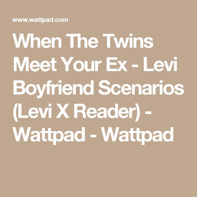 Levi Boyfriend Scenarios (Levi X Reader) - When The Twins