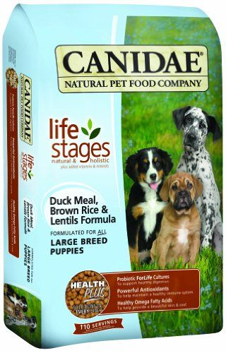 Top 5 Best Dog Foods For Great Danes [2017 Buyer's Guide ...