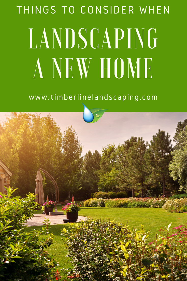 New home garden  Things to Consider When Landscaping a New Home  Lovely Landscape