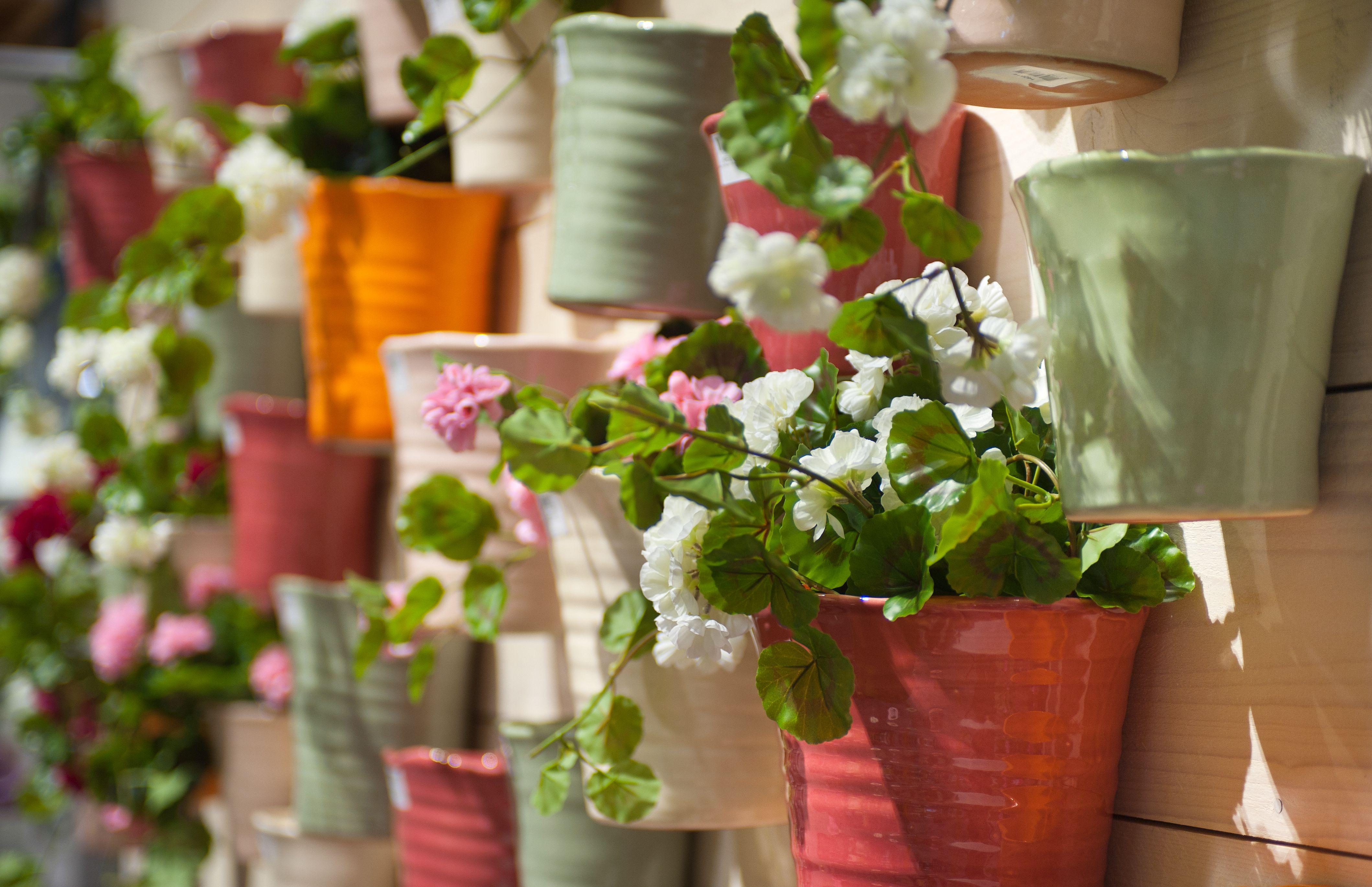 Fleur je saaie schutting op met muurpotten vol zomerse,bloeiende ...