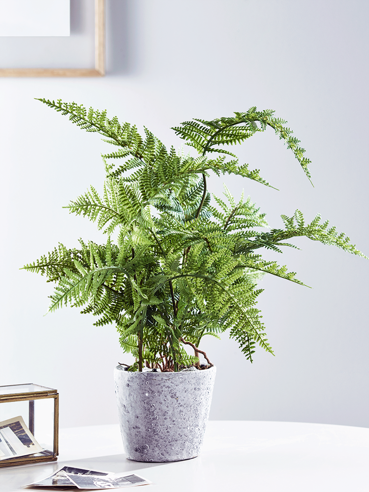 Potted In A Rustic Concrete Pot, Our Artificial Table Top Plant Is Filled  With An