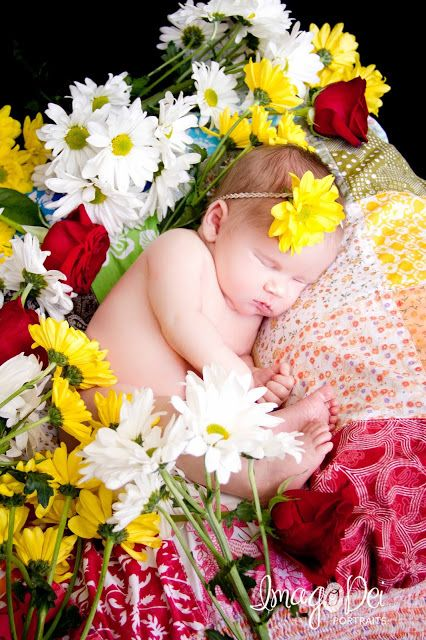 baby photo shoots with fresh flowers - Google Search