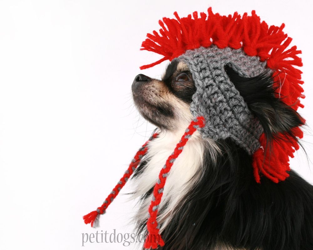 Cute Crochet Dog Hat handmade in Canada! Knit dog hats perfect for ...