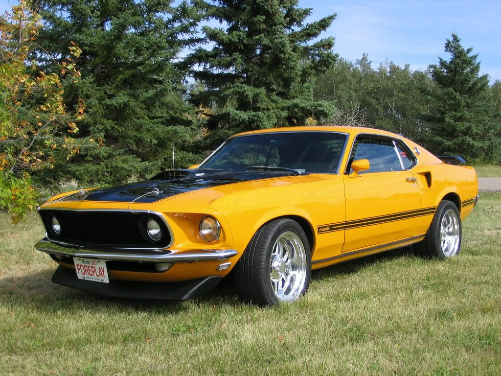 1969 mustang mach 1 all graphics 1969 ford mustang mach 1