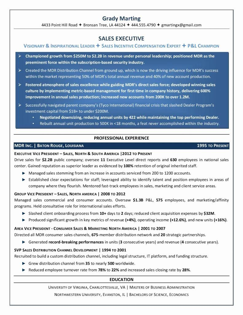 Free Executive Resume Templates Luxury Executive Resume