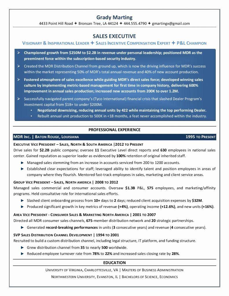 Free Executive Resume Templates Luxury Executive Resume