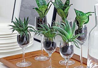 Studio Floral Dora Santoro: Reciclando Idéias