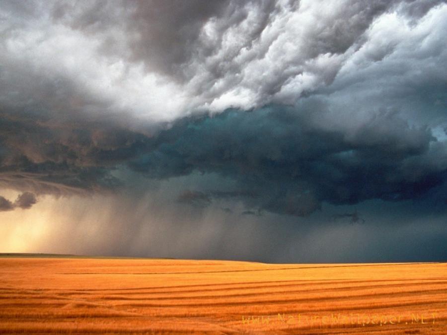 Storm Over Stubble Field, Saskatchewan, Canada - Pixdaus | Weather  wallpaper, Clouds, Storm wallpaper