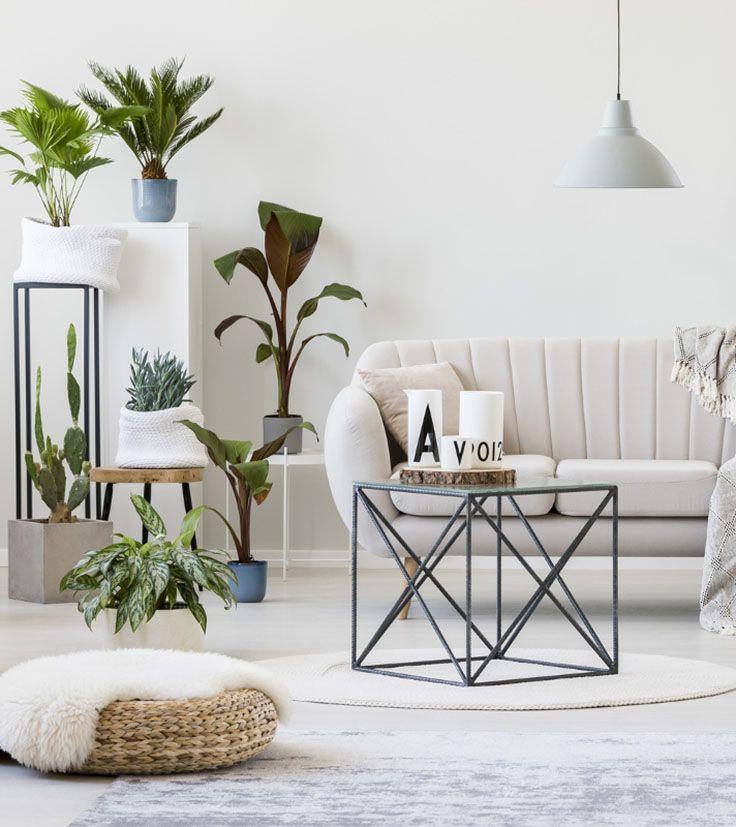 Stell alle Zeichen auf grün und schaff Dir ein Paradies! Das - Wohnzimmer Design Grun
