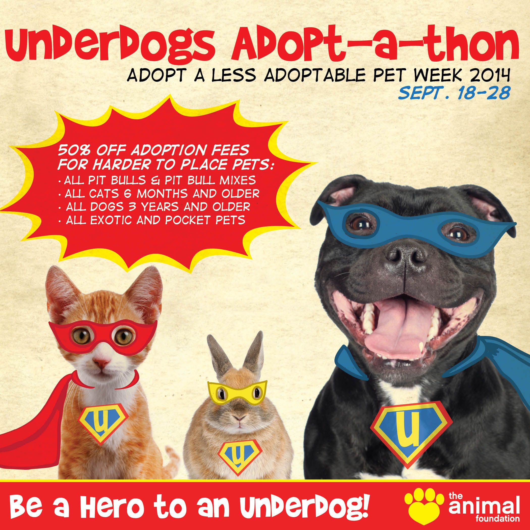 Have No Fear Underdog Discounts Are Here Our Shelter Pets Are Pretty Pawsome But It S No Secre Dog Adoption Event Pet Adoption Event Dog Rescue Fundraising
