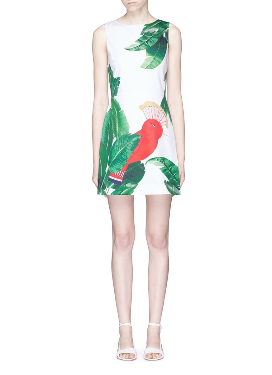 Alice and olivia malin bird and palm tree print sleeveless dress alice and olivia malin bird and palm tree print sleeveless dress aliceandolivia ombrellifo Images