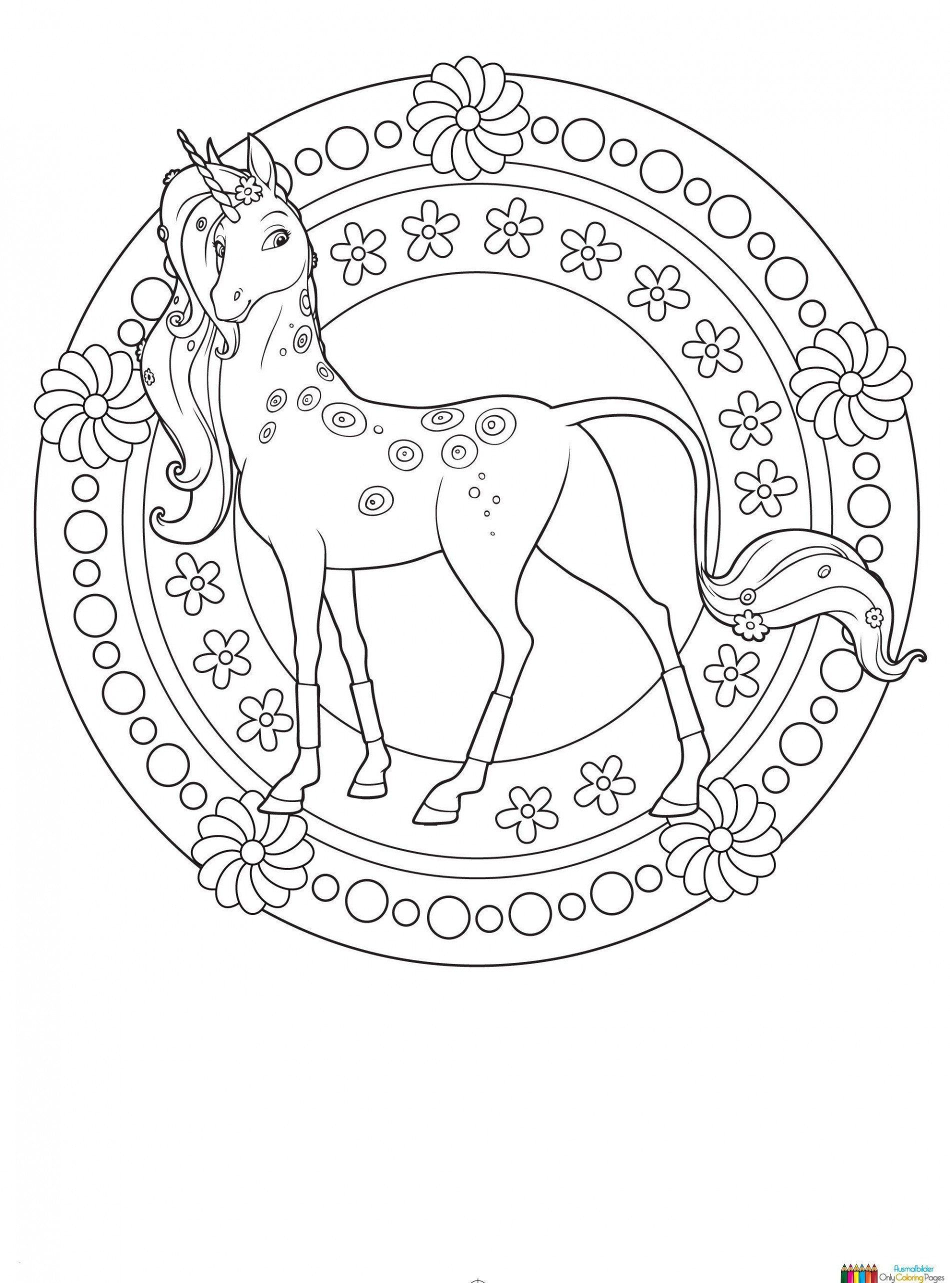Coloring Pages for Babies Elegant 10 Baby Ohnezahn Ausmalbilder in