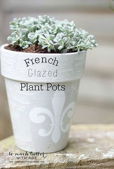 Flower Pots Idea Box By Tara @ Suburble