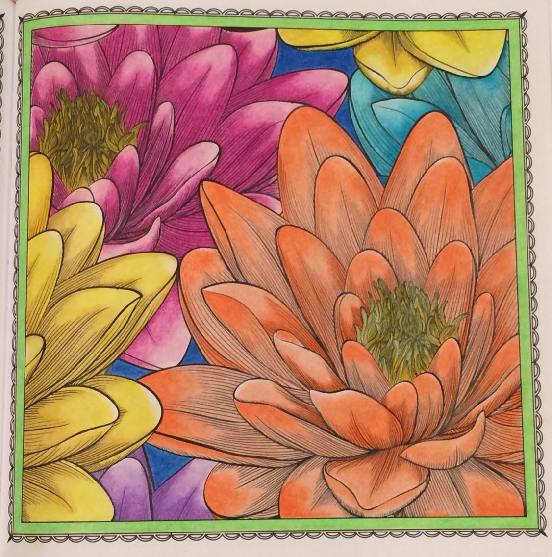 """""""Rise Above"""" (Lotus Flower) Adult Coloring"""