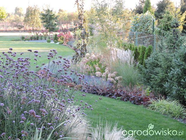 Zielonej ogrodniczki marzenie o zielonym ogrodzie - strona 846 - Forum ogrodnicze - Ogrodowisko