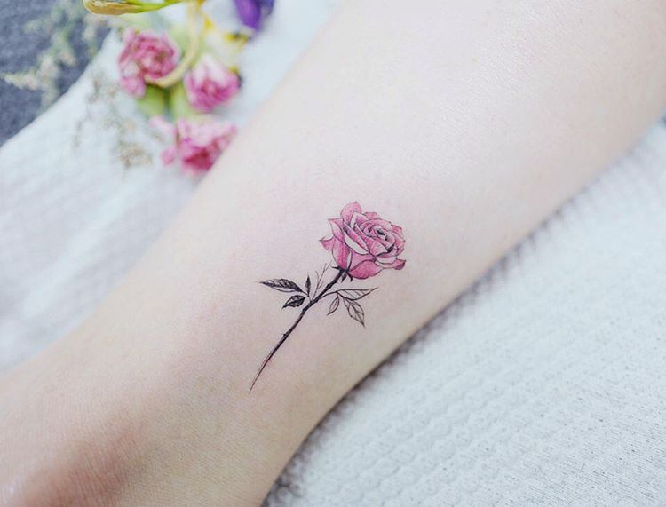 Watercolor Tattoos Korean Style Shoppe Today Better Than You Think Https S Pink Rose Tattoos Small Rose Tattoo Watercolor Rose Tattoos