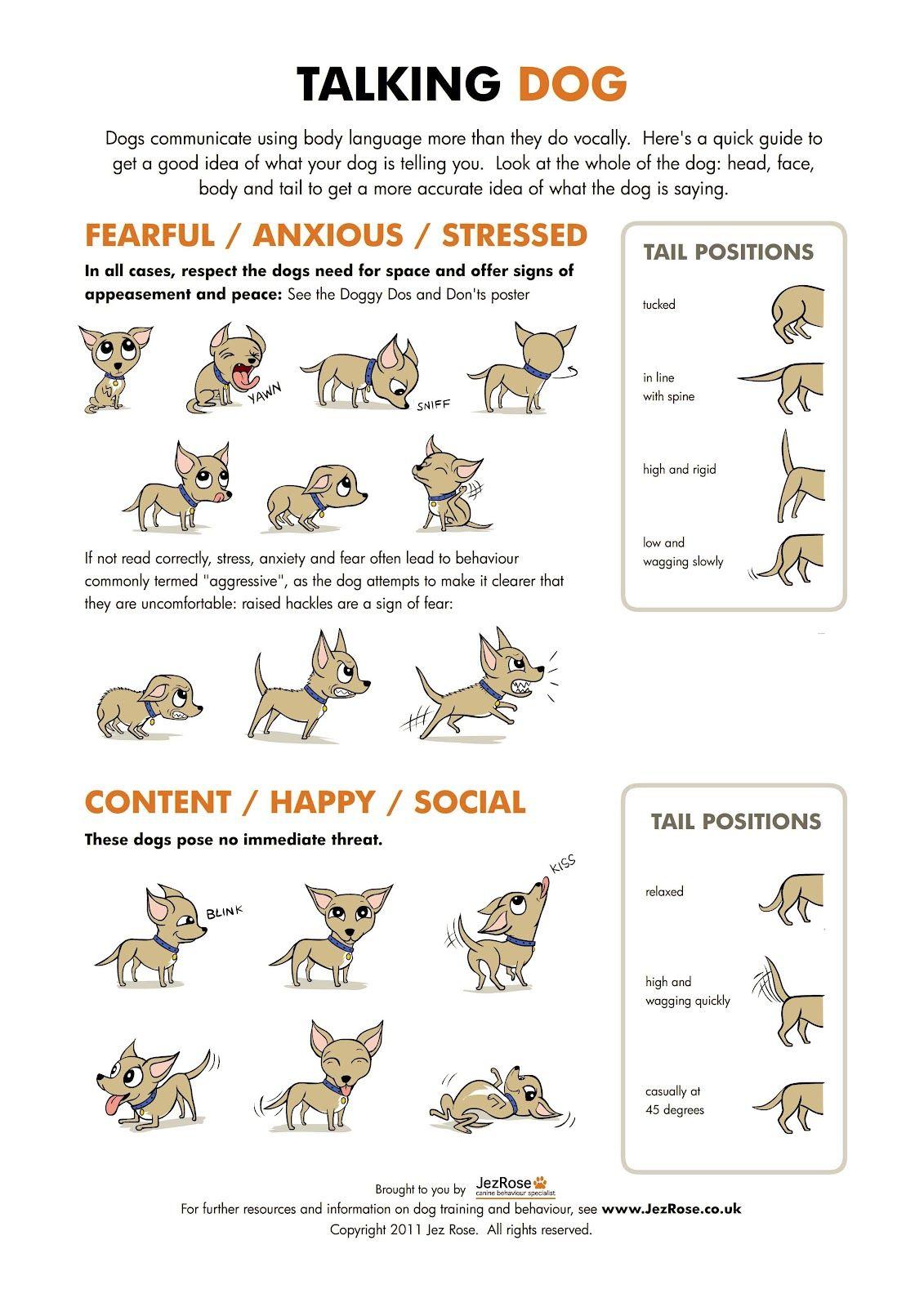 Talking Dog Poster Dog Body Language