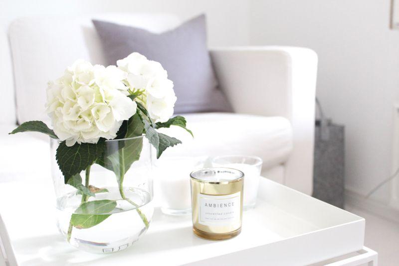 White interior | hydrangea | Hay