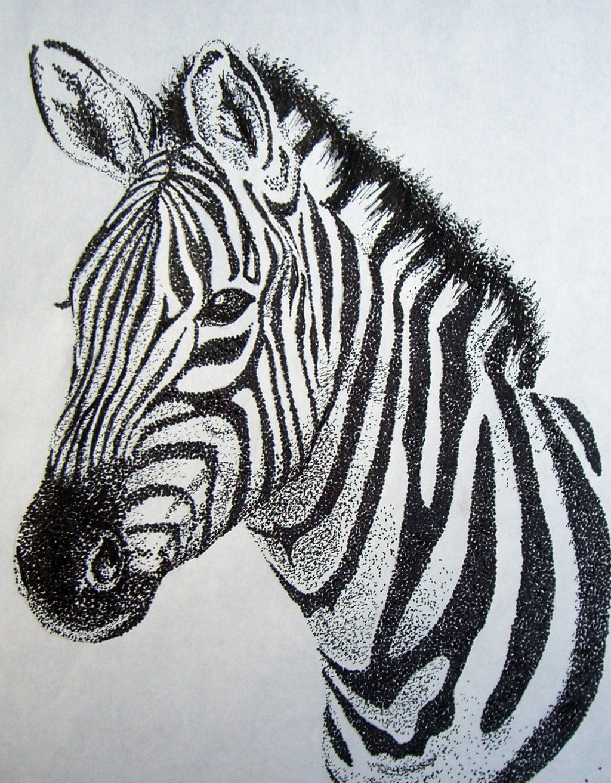 Zebra Drawing Face Google Haku Arte Punteado Cebras Zebra Dibujo