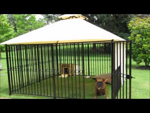 Image result for dog run with enclosure ideas | dog kennel ...