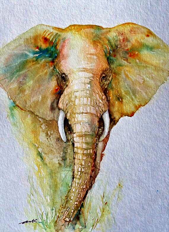 Pin By Sandy Rich On Water Colors Elephant Art Elephant