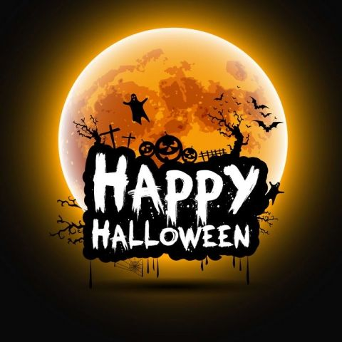 Happy Halloween Theme Photography Backdrops With Bat Bright Moon - halloween backdrop