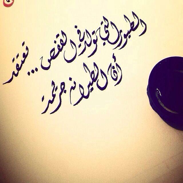 الطيور التي تولد في القفص تعتقد أن الطيران جريمة Arabic Words Arabic Quotes Wisdom Quotes