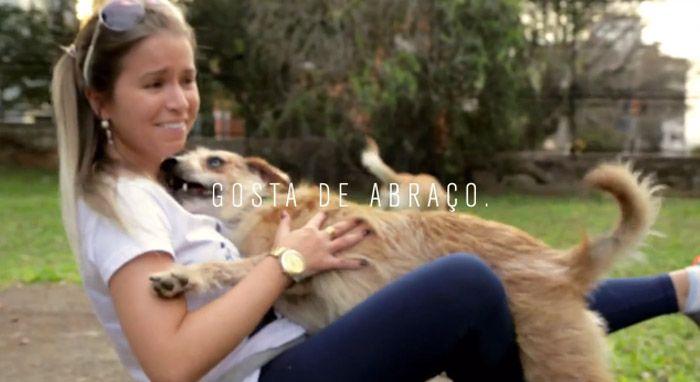 Open Bar Canino promove adoção que foge dos padrões de raças | Razões para Acreditar