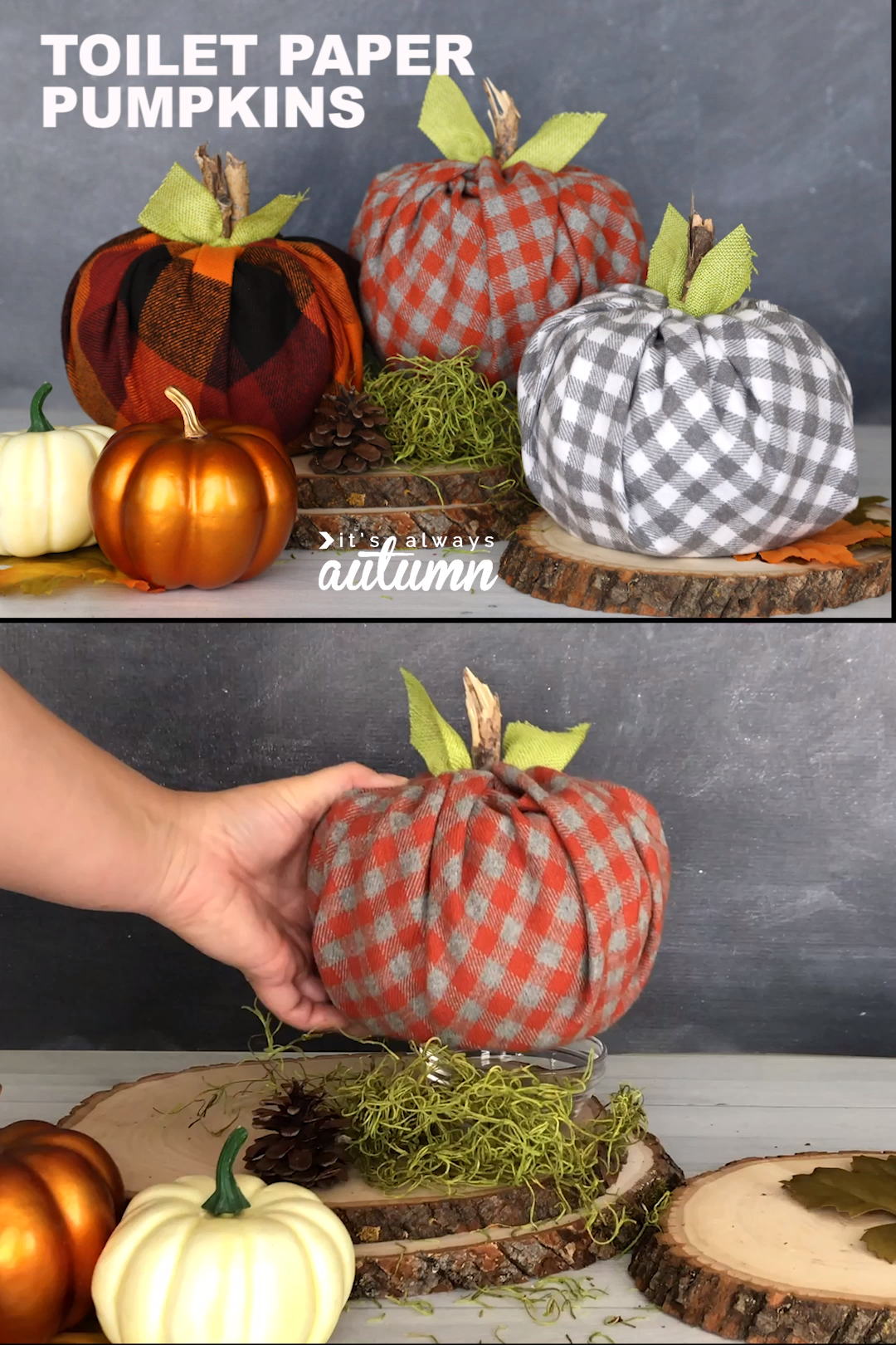 This is such a cute fall decoration! Wrap toilet paper rolls in adorable plaid flannel to make cute little pumpkins. It's a super easy fall craft.