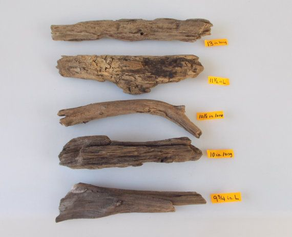 DWB31 4 Piece Driftwood Lot