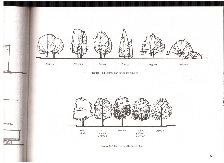 TECHOS ARBOLES PAVIMENTOS TEXTURAS LandschaftsskizzeLandschaftsplanung Skizzen KunstSkizze IdeenBaume ZeichnenArchitektur