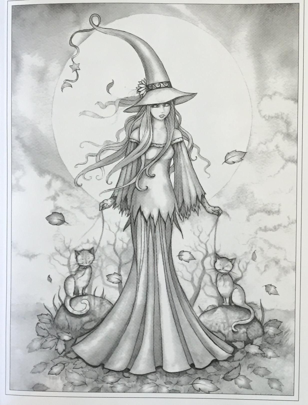 Autumn Magic Grayscale Coloring Book Autumn Fairies