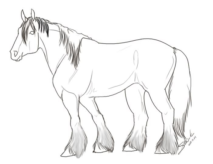 Shire Horse Coloring Pages Horse Coloring Pages Horse Coloring Horses