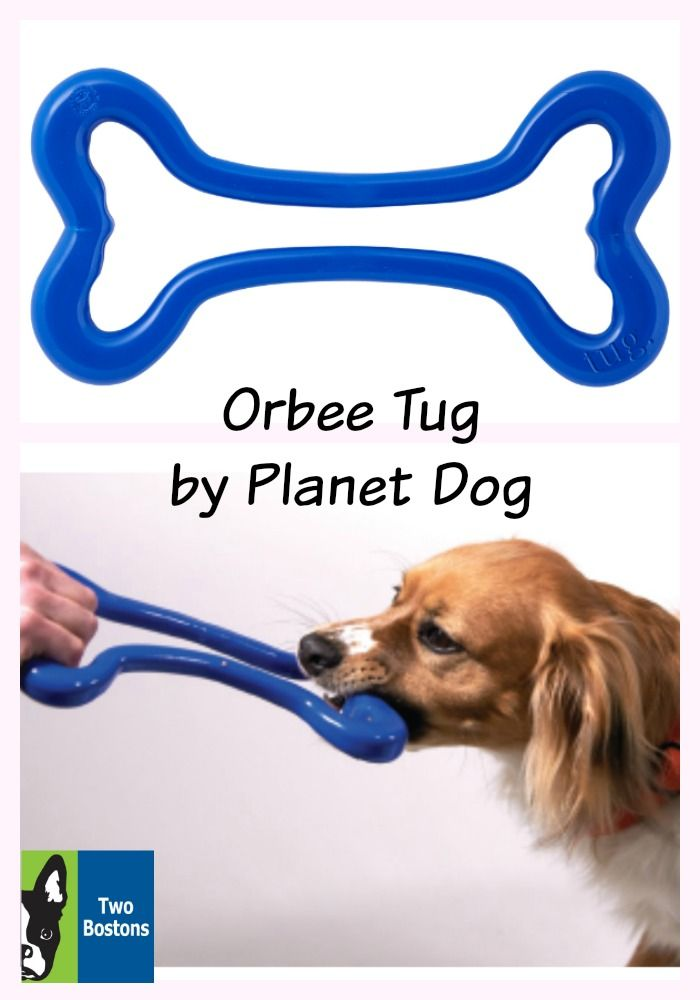 Orbee Tug By Planet Dog Play Time Dog Toys Dog Toys Dogs