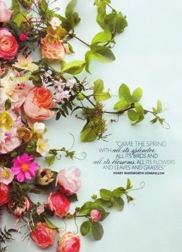 Spring has sprung quotes 7 on a shoestring true and pretty words spring has sprung quotes mightylinksfo