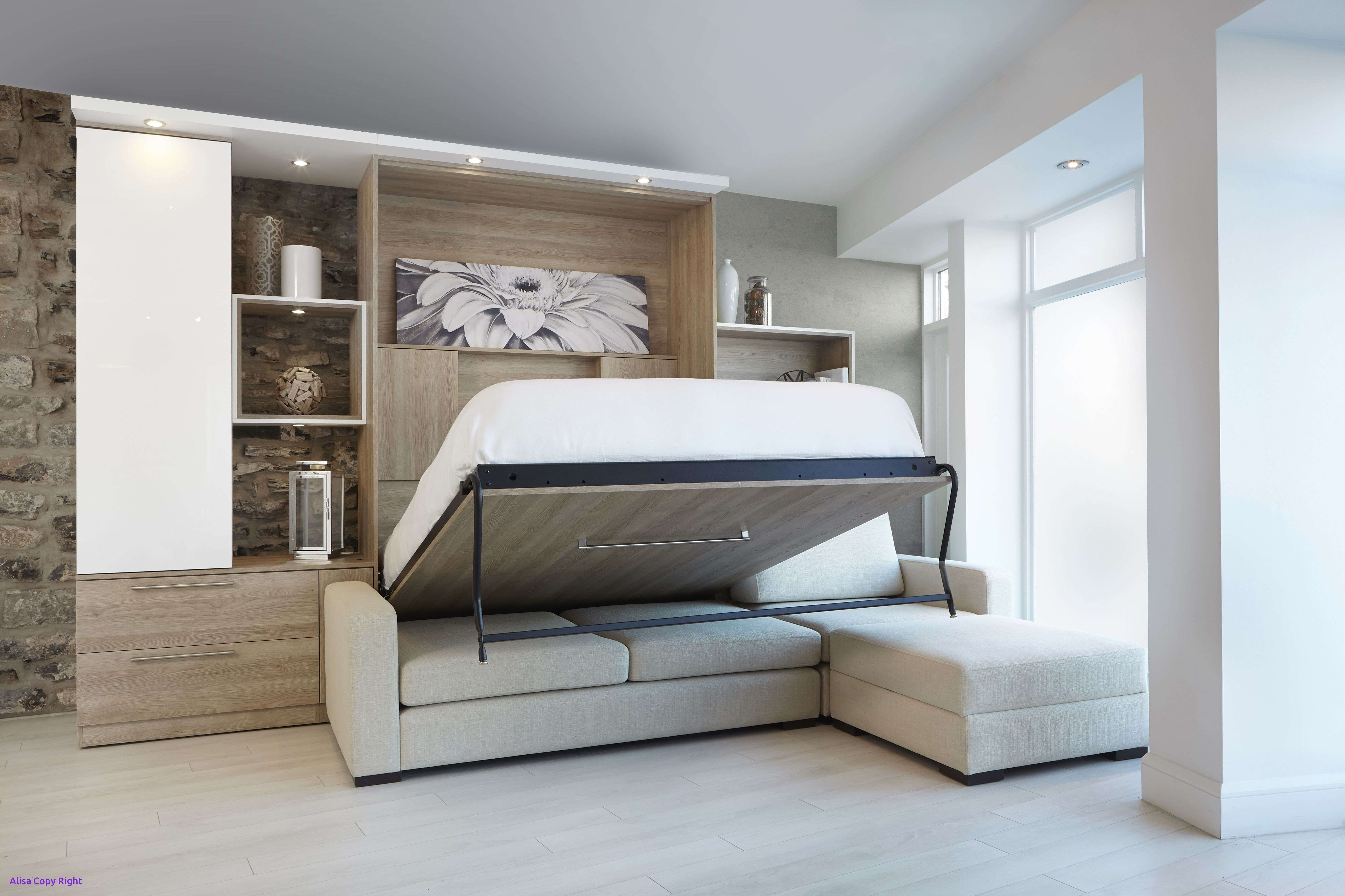 Murphy Bed Over sofa Combo homedecoration