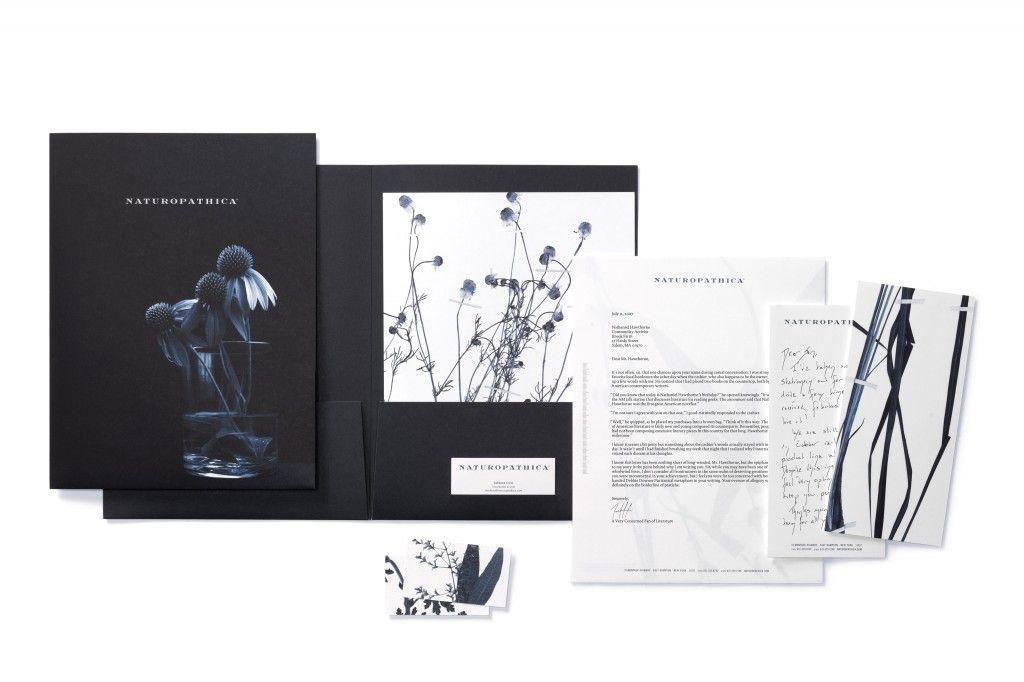 Naturopathica Naturopathica Folder Design Graphic Design Resources