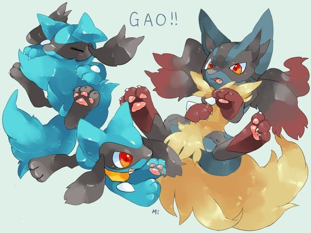 riolu and mega lucario