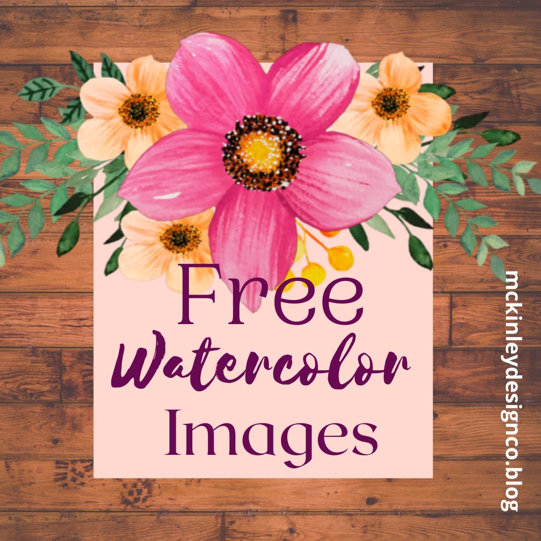 Flower Illustrations Free Flower Illustration Flower Clipart Free Graphics
