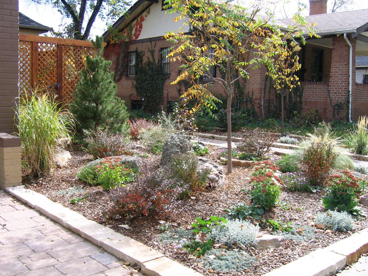 Lawnless Backyard on