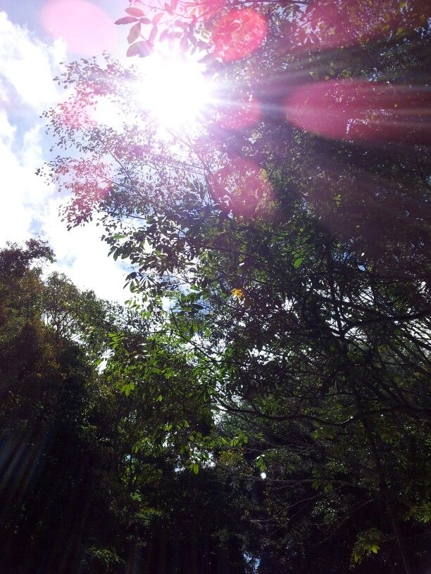 Paisaje natural... Efecto solar...