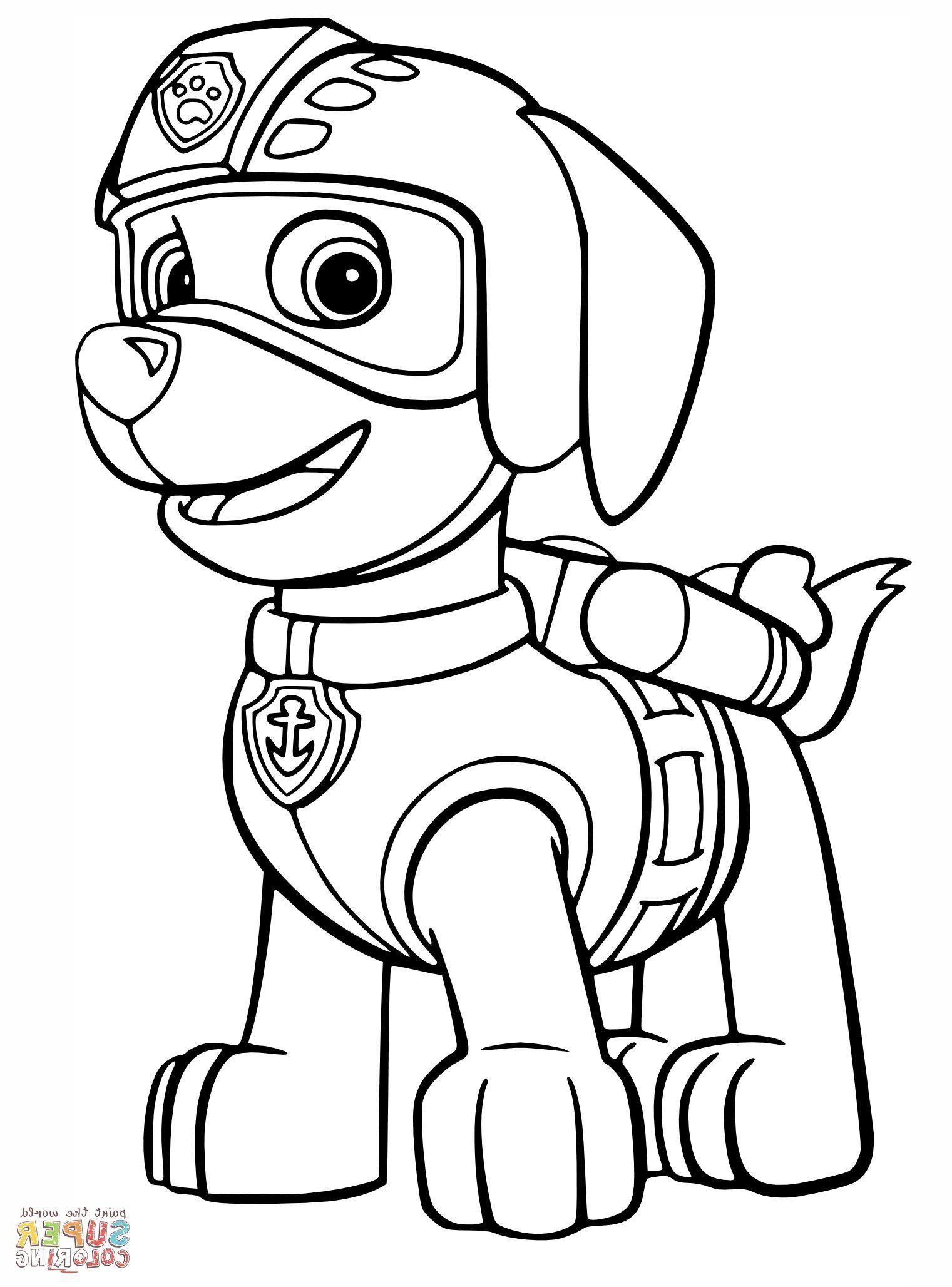 Paw Patrol Coloring Buku Mewarnai Kartun Binatang