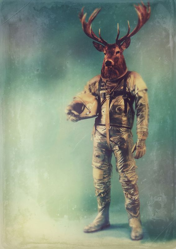Space Mammals by RubbishMonkey http://society6.com/rubbishmonkey All prints available at society6. Like a monkey ready to be shot into space… space monkey!