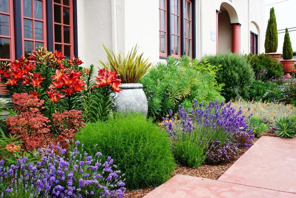 Low Water Landscaping No Grass : Low Water Landscaping Designs .