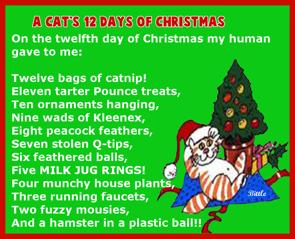 Pin By Chrissy Bennett On Christmas Christmas Cats 12 Days Of Christmas Cats
